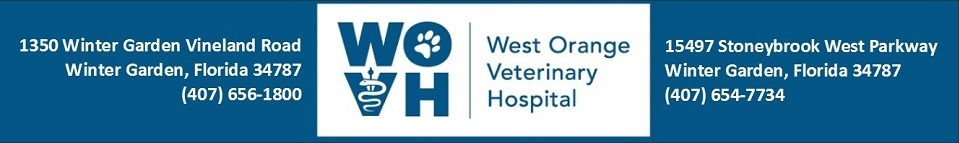 Logo for Veterinarians Winter Garden Florida | West Orange Veterinary Hospital